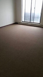 Room Available in Downtown 2 Bedroom Apt (Roommate Wanted!)