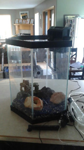 Beautiful Hexagonal Fish Tank with Accessories for Sale!