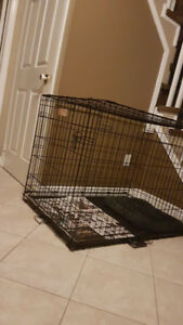 Dog Crate and Pen