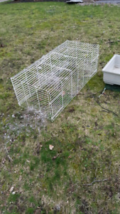 Free large cage top