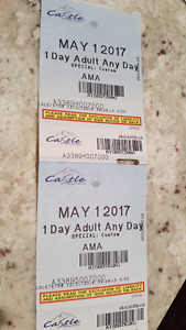 2 one day Adult ski lift tickets for Castle Mountain.