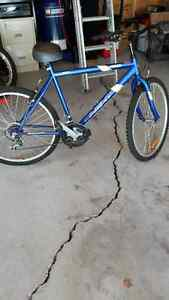 Challenger/Men's Mountain Bike