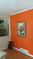 Pro Painter 20 Years Experience, Affordable Rates!