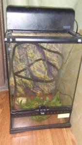 Gecko cage