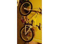 Giant faith 3 mountain bike/downhill full suspension