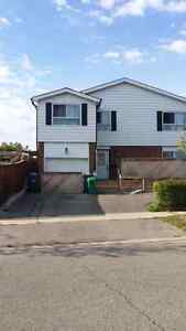 3 bedrooms house available Nov 1