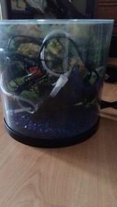 Aquarium 3 gallons tout inclus !!!