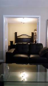 1 Bedroom Fully Furnished Condo Near Whyte Ave/ UofA. $1250.00
