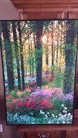 Large Framed Picture - Woodlands
