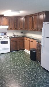 Beautiful, clean basement apartment available immediatly