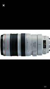 Canon 100-400 f4.5 IS telephoto