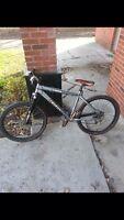 Tribal chunk 26 inch mountain bike