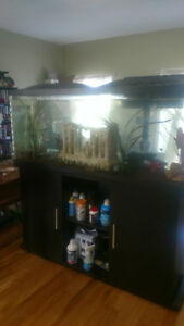 Aquarium with pedestal and all accessories