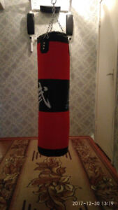 Punching Bag (Perfect condition - almost 4 month old)