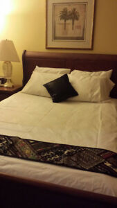 Brand new 100% Cotton Bed Sheets, Fitted and Pillow covers