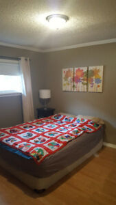 Room for Rent $550 monthly