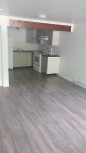 New 3 1/2 bachelor's basement appartment for rent in Les Cedres.