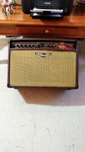 acoustic electric guitar and amplifier