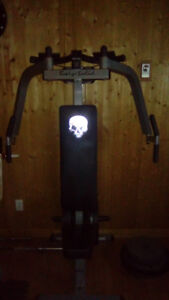 Body solid pec and bicep machine