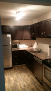 *Price Reduced*ONE BEDROOM APARTMENT  FOR RENT