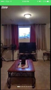 Pet friendly one bedroom basement for rent in Thickwood Now