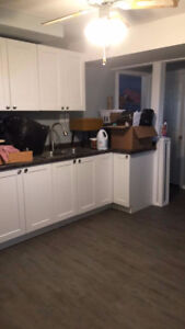2 bedroom newly renovated basement suite