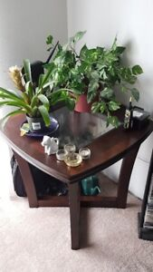 Pair of matching end tables - excellent condition!