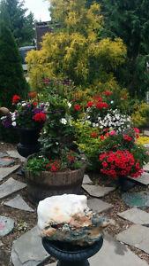 6 Iron Garden Urns
