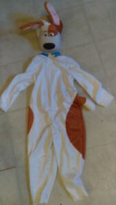 Costume Halloween Chien Max 2 ans