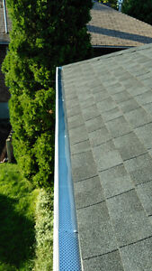 Eavestrough Cleaning! London Ontario image 9