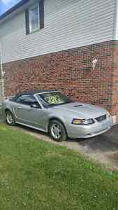 2002 Ford Mustang REDUCED from 2300 to 1700.00 Oct.20th