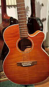 TAKAMINE acoustic/ electric
