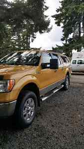 2009 Ford F-150 SuperCrew Gold Pickup Truck