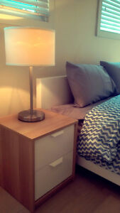 Beautiful, Furnished, Modern, Central Edmonton House for Rent