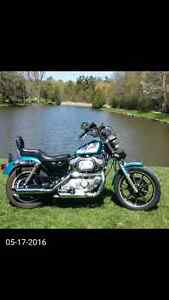 1994 sportster evolution