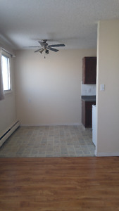 One bedroom apartment for rent at 10630-111 Street Downtown