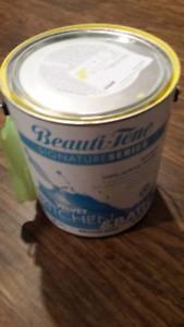 Yellow paint-3/4 full Beauti tone