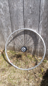 26 inch fixed gear wheel