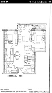 Looking for a roommate for a dream appartment