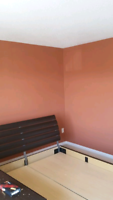 Very experienced painters available