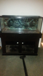 55 gallon Hagen Aquarium and home made wood stand with cabinets