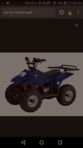 Wanted decent priced kids Chinese quad