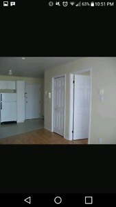 LOOKING FOR ROOMMATE, $300 A MONTH EVERYTHING INCLUDED