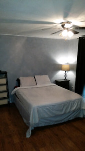 Large room with ensuite in Hanmer
