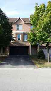 3+1Bedrooms townhouse for rent immediately. Hwy7/Markham Rd
