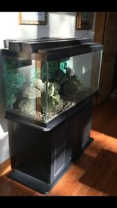90 Gallon Tank with Stand