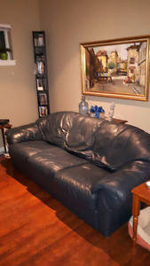 Natucci Blue Leather Couch