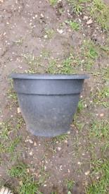 Selection of black plastic pots