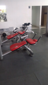 Life Fitness, Hammer Strength, Treadmills, Rower for sale