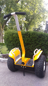 19 inch off road 48V scooter